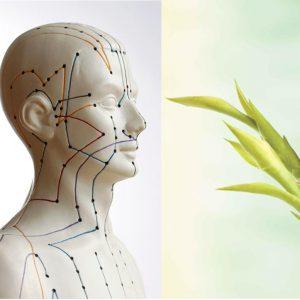 Naturheilkunde-Akupunktur
